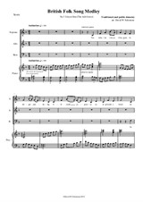 Llwyn Onn - arranged for SAB choir and piano (or keyboard with harp sound)