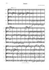 Details for string quintet (2 violins, 2 violas, 1 cello)